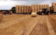 Jg & de hodgson  with Flat trailer at Kirkbride