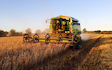 Land and forestry ltd with Combine harvester at United Kingdom