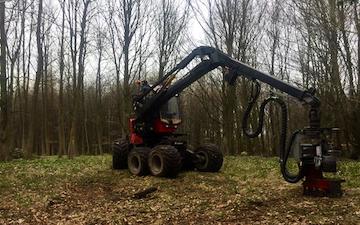 Skov kompagniet med Skovning/beskæring ved Rønnede