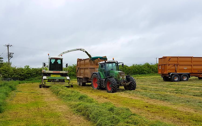 Jon sealey & sons ltd  with Forage harvester at Tarnock
