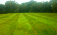 Broad leaf ground maintenance  with Mower at Royal Tunbridge Wells
