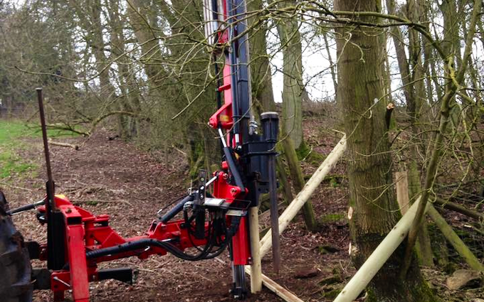 Such forestry with Fencing at United Kingdom