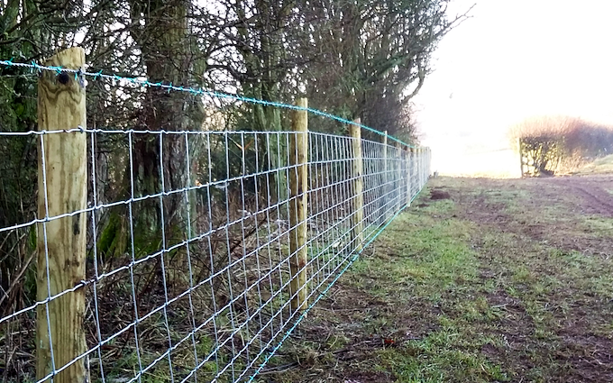 D j lloyd contracting  with Fencing at Vowchurch