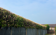 J h a agricultural and horticulture services  with Hedge cutter at United Kingdom