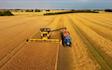 Mariesminde landbrug med Mejetærskning ved Roslev