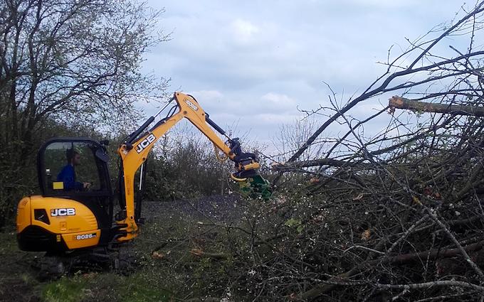Tr skov & anlægsservice med Skovning/beskæring ved Tappernøje