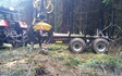 Askebjerg med Udkørsel/Udslæbning ved Vorbasse