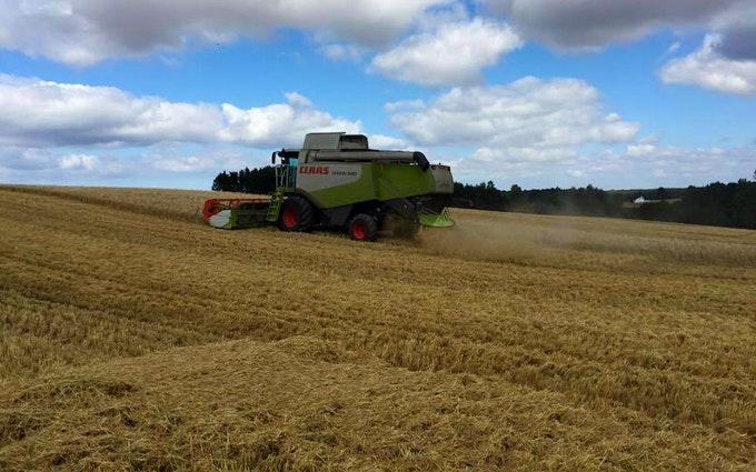Mejnertsen farming med Mejetærskning ved Regstrup