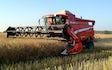 Wittenwiler's agro med Mejetærskning ved Frederikssund