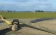 Døllefjelde maskinstation a/s med Gylleudlægger med slangebom ved Kettinge